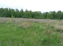 Земельный участок 2,5 ГА, вблизи деревни Крюково, Чеховский район