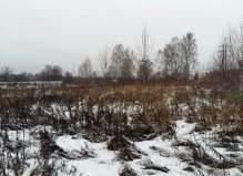 Участок 14 соток в деревне Люторецкое Чеховского района