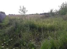 Эксклюзив! Участок 25 соток в Чеховском районе деревня Васькино