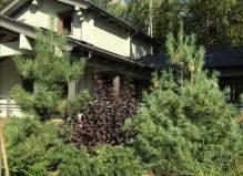 Эксклюзив! Шикарный дом + баня в Чеховском районе. Лесной ручей, деревня Ходаево