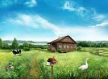 Фотография Преимущества дома в деревне