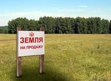 Фотография к статье Доводы «за» и «против» покупки участка земли в 2016 году