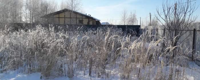 Участок 9 соток в деревне Мерлеево, Чеховский район, фотография