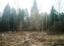 Земельный участок в деревне Слепушкино, 48 сотки, Под застройку жилыми и нежилым...